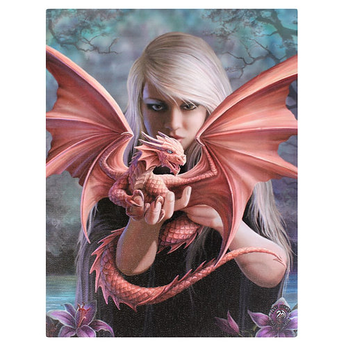 Dragonkin (Anne Stokes) Canvas Print 19x25cm