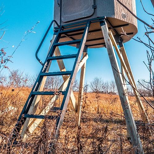 Banks Steel Ladder
