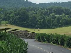Rappahannock landscape architecture and garden.