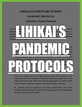 pandemic protocols.png