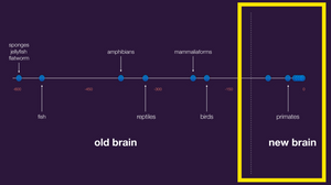 Old Brain vs. New Brain for AI (Source: Dileep George, Co-founder & CTO @ Vicarious AI, Robin.ly AI Commercialization 2019)