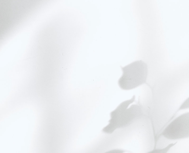 fakurian-design-GAnCCU7mqIU-unsplash_edited.jpg