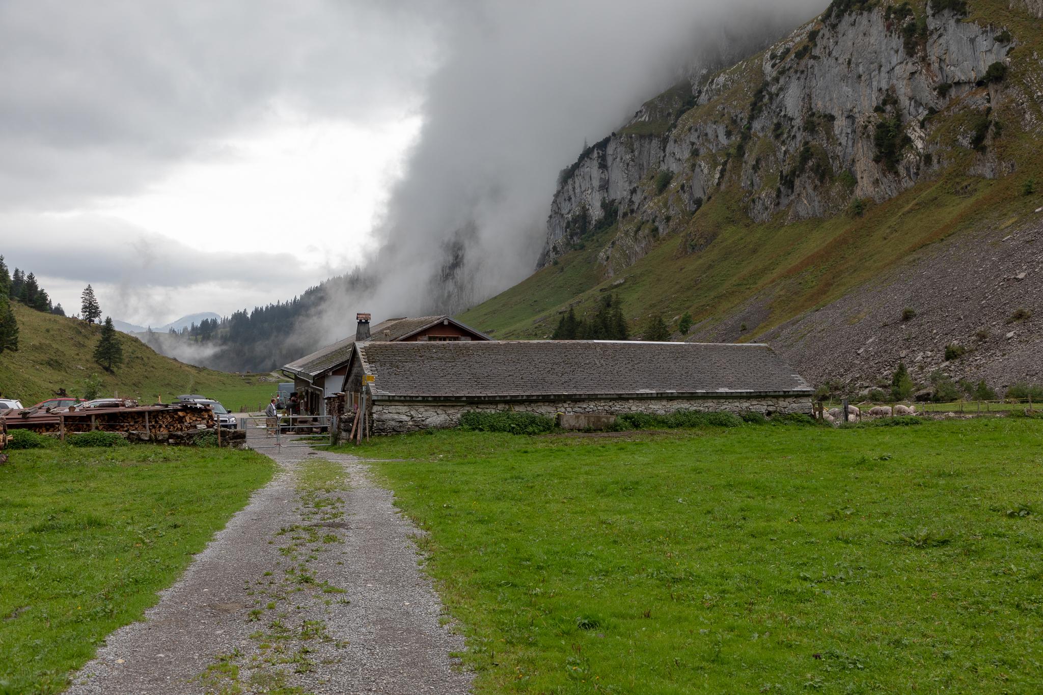 Alp Tesel