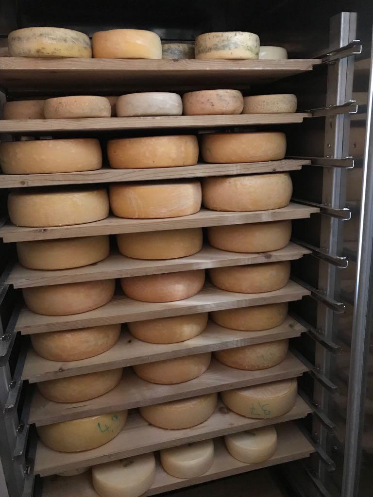 Unser Käselager im Allgäu