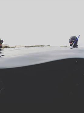 Freediving in Halifax