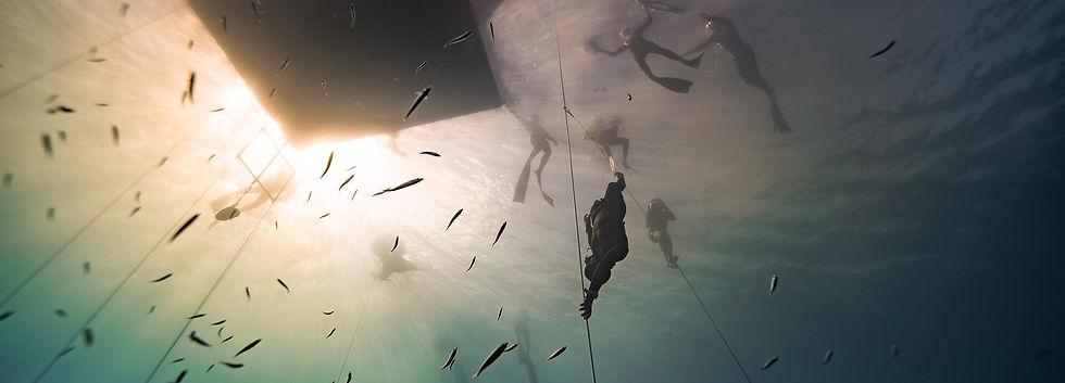 canada-freediving-events.jpg