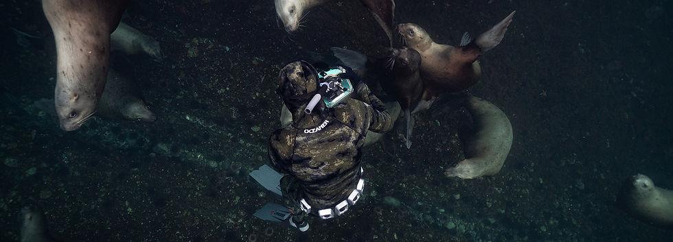 freediving-clubs-canada.jpg