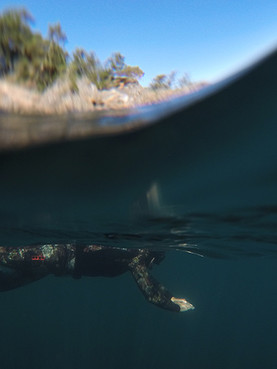 Freediving on Vancouver Island