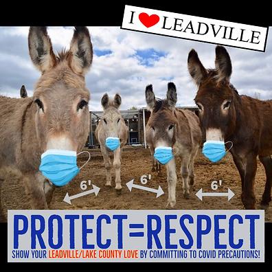 2020-11-04_LeadvilleLoveDonkeysMasked.pn