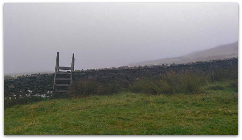מעבר גדר עם סולם - טרק - וולס
