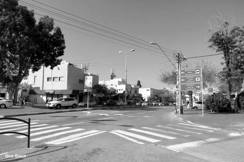 מרכז זיו - נווה שאנן - שביל חיפה - טרק - טיול בחיפה