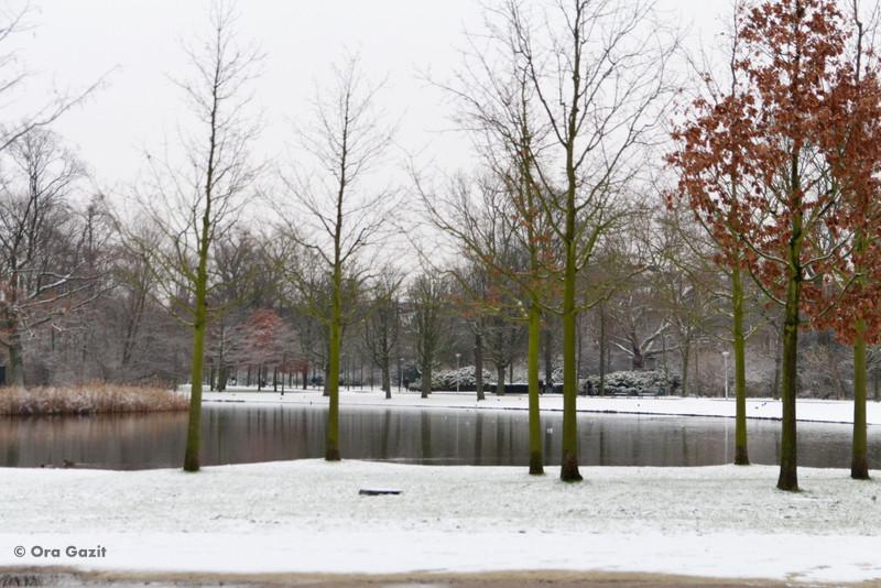 שלג - וונדלפארק - אמסטרדם המלצות - אמסטרדם בחורף