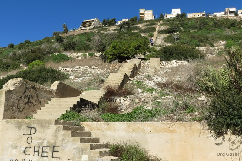 מדרגות  בוסתן חיאט - נחל שיח - שביל חיפה - טרק - טיול בחיפה