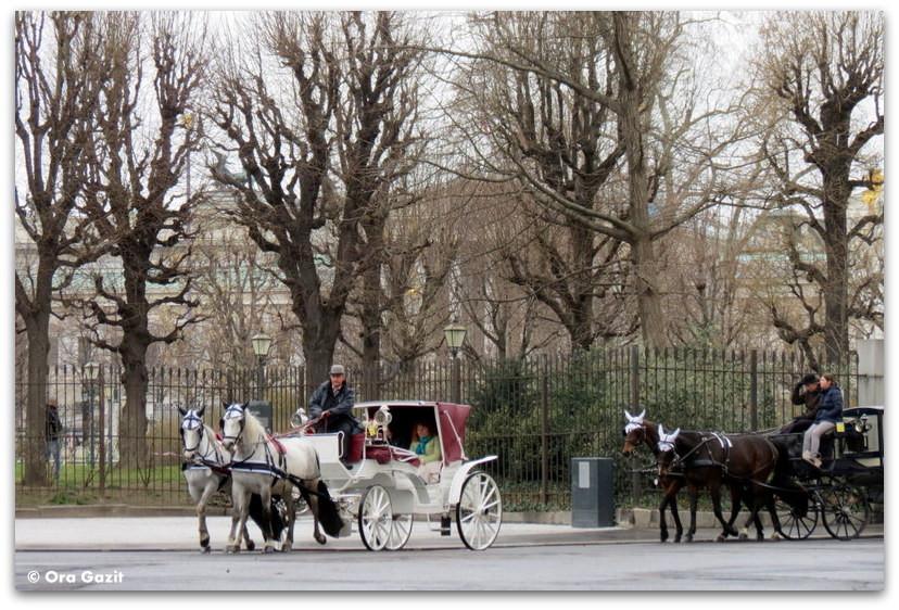 מרכבות סוסים - וינה