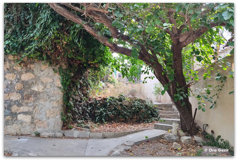 סמטה ירוקה - כפר האמנים עין הוד - חנויות עיצוב - בוידם