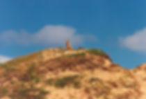דינגו, אוסטרליה - יומן מסע - טיול אחרי צבא
