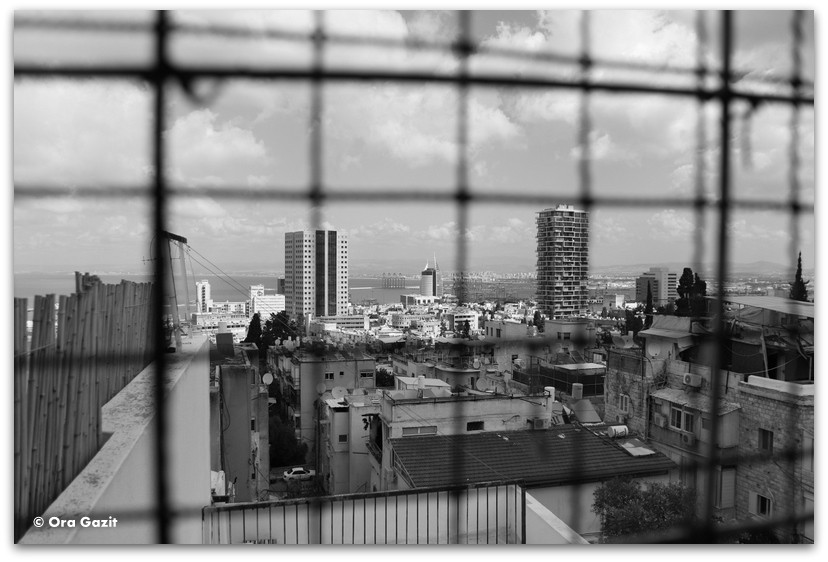 תצפית על חיפה - מה לעשות בחיפה - מסלול 1000 המדרגות