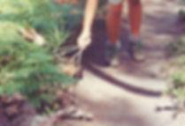 זיקית, אוסטרליה - יומן מסע - טיול אחרי צבא
