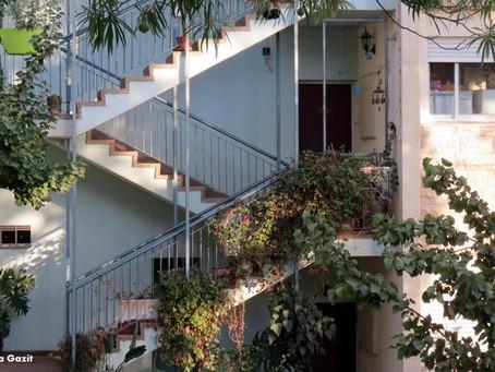 שביל חיפה | מקטע 10: סביב ציר רכס הכרמל