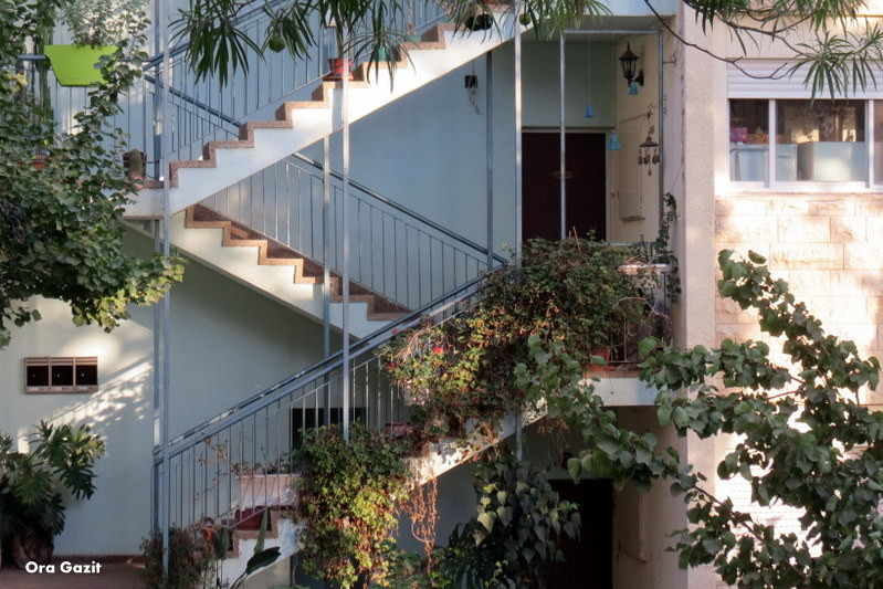 בניין עם מדרגות חיצוניות - שביל חיפה - טרק - טיול בחיפה