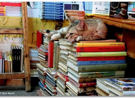 ספרי מסע - לטייל במרחבי הדמיון