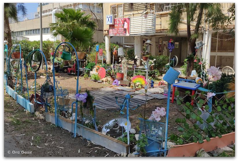 גינה יפה - רחובות בקרית אליעזר - שמות רחובות בחיפה - טיול בחיפה
