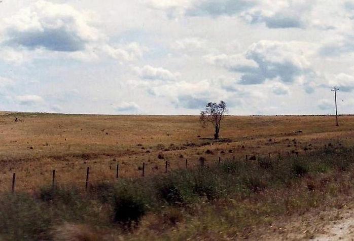 אוסטרליה - יומן מסע - טיול אחרי צבא