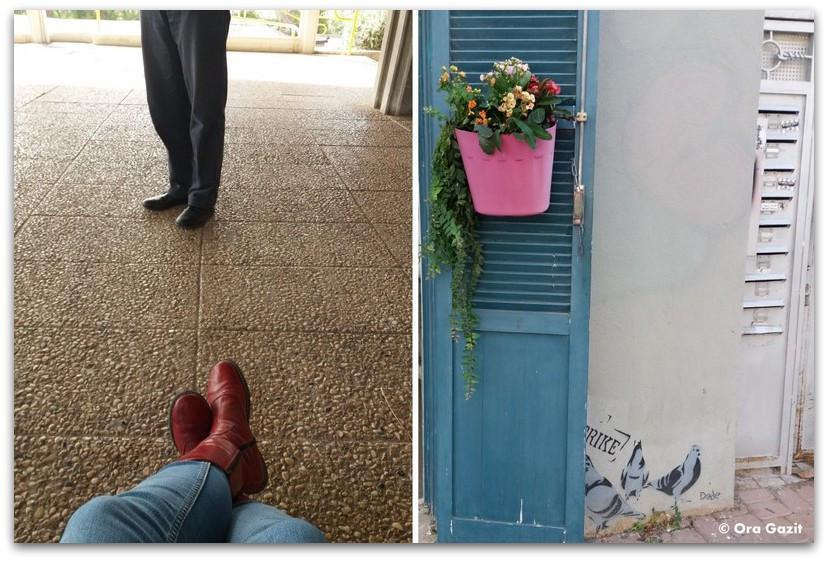 עציץ ורוד על דלת כחולה - מה עושים היום בתל אביב