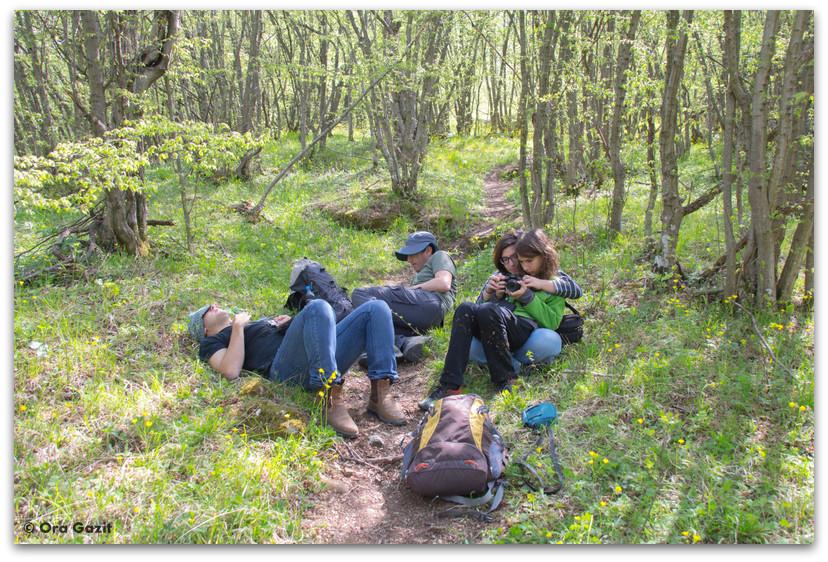 משפחה ביער - בולגריה - טיול עם ילדים בחול