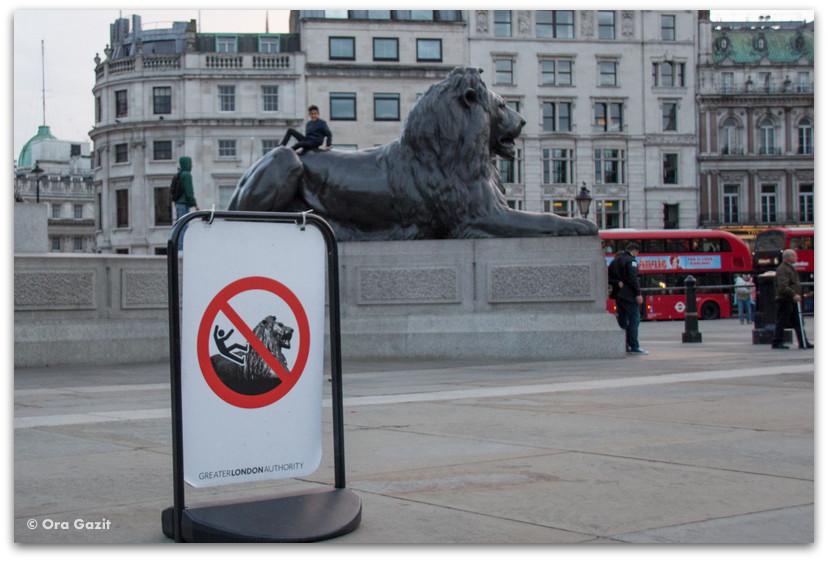 האריה בכיכר טרפלגר - לונדון - יומן מסע