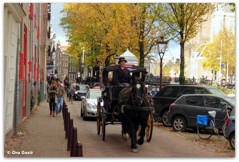 מרכבה עם סוס, שלכת, אמסטרדם