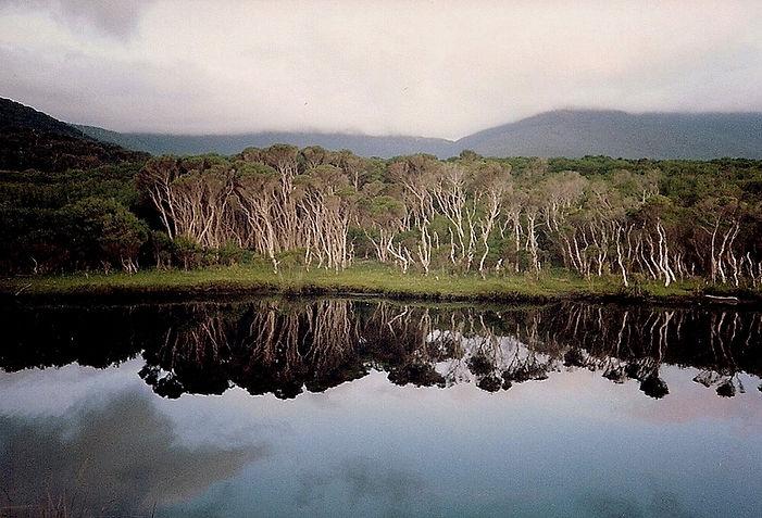 השתקפות באגם, אוסטרליה - יומן מסע - טיול אחרי צבא