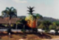 אננס ענק, אוסטרליה - יומן מסע - טיול אחרי צבא