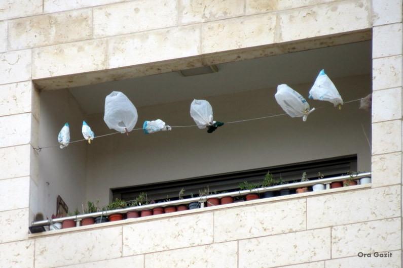 שקיות תלויות לייבוש - שביל חיפה - טרק - טיול בחיפה
