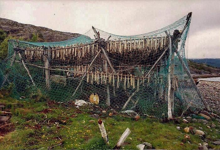 מתקן ייבוש דגים, נורבגיה - יומן מסע - טיול אחרי צבא