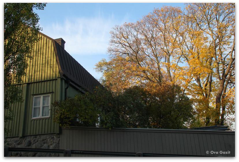 בית ועצים בשלכת - שטוקהולם
