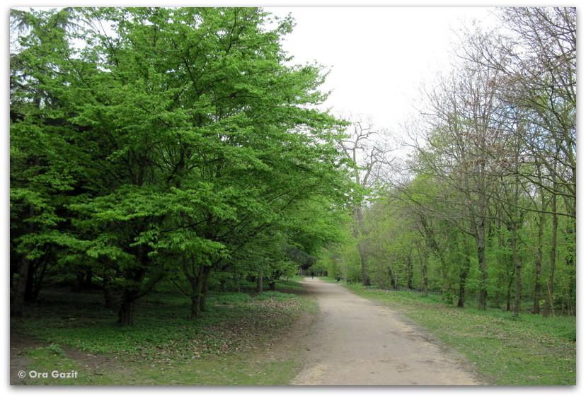 יער בולון - פארק - פריז