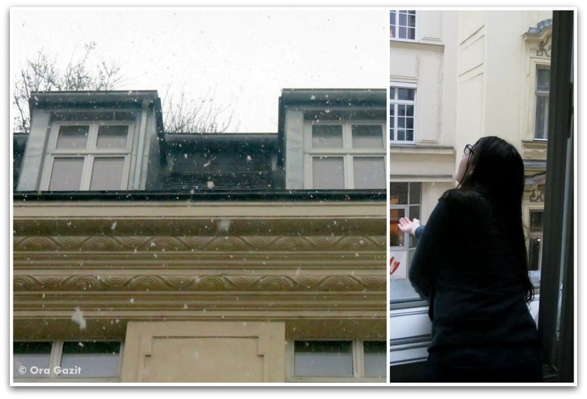 שלג בחלון - וינה