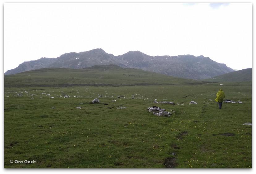 נוף ירוק בדרך לבקתה - טרק הרי רילה בולגריה - יומן מסע
