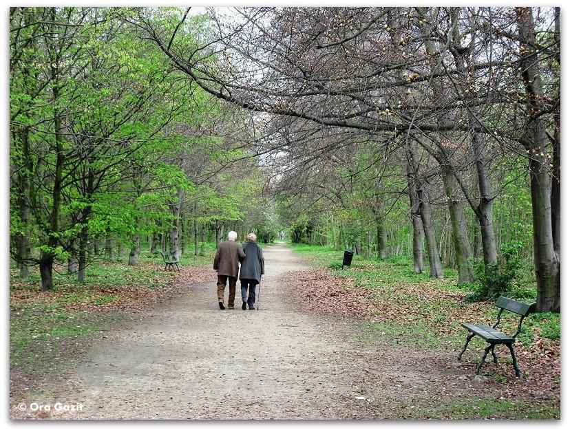 זוג מבוגר הולכים ביער - זכרונות - פריז