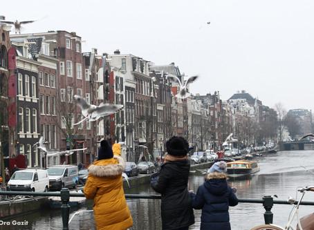 אמסטרדם - לבד על המרבד