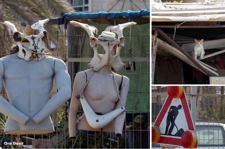 חצר מקושטת - שביל חיפה - טרק - טיול בחיפה