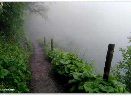 שמחת הערפל והגשם - טרק סובב מון בלאן - יום 8