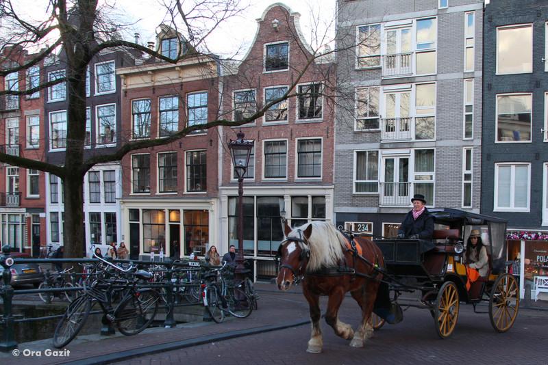 מרכבה עם סוס - אמסטרדם המלצות - אמסטרדם בחורף