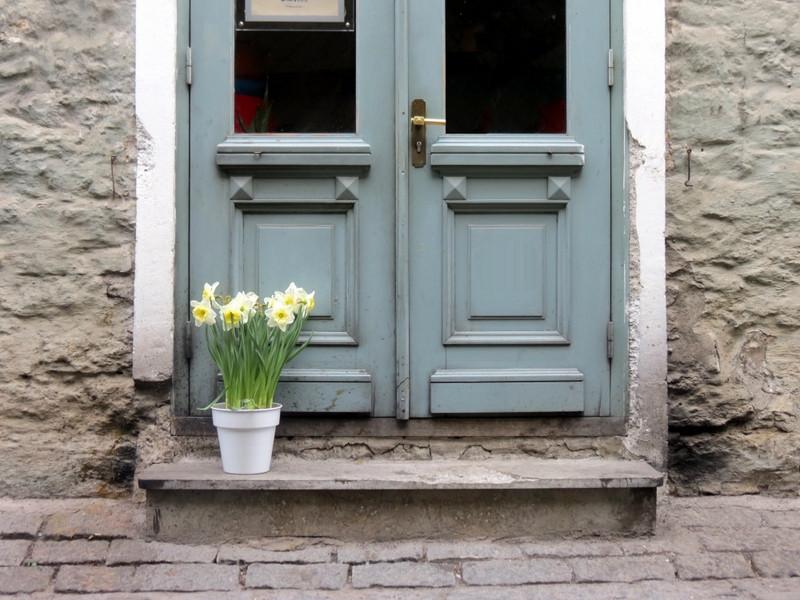 דלת יפה - טאלין, אסטוניה