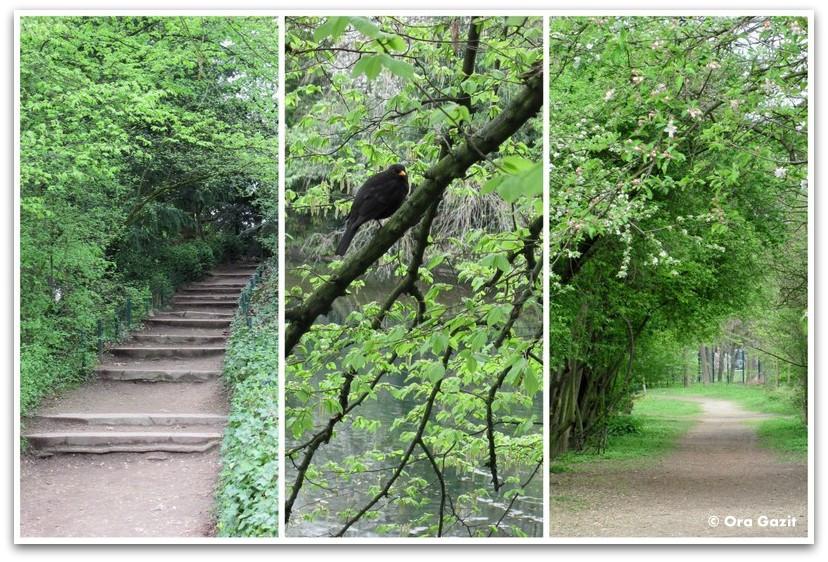 יער ירוק, יער בולון, פריז