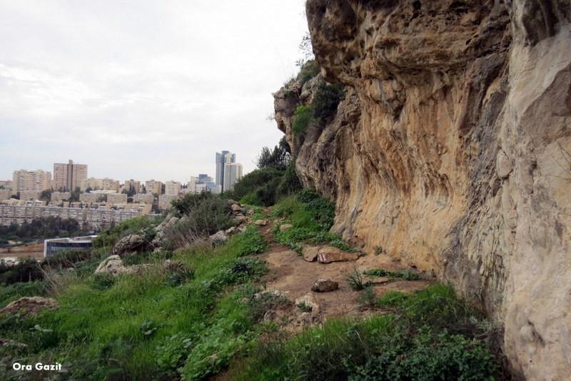 צניר - שביל חיפה - טרק - טיול בחיפה