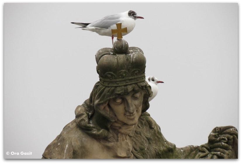 פסל ועל ראשו ציפורים, פראג