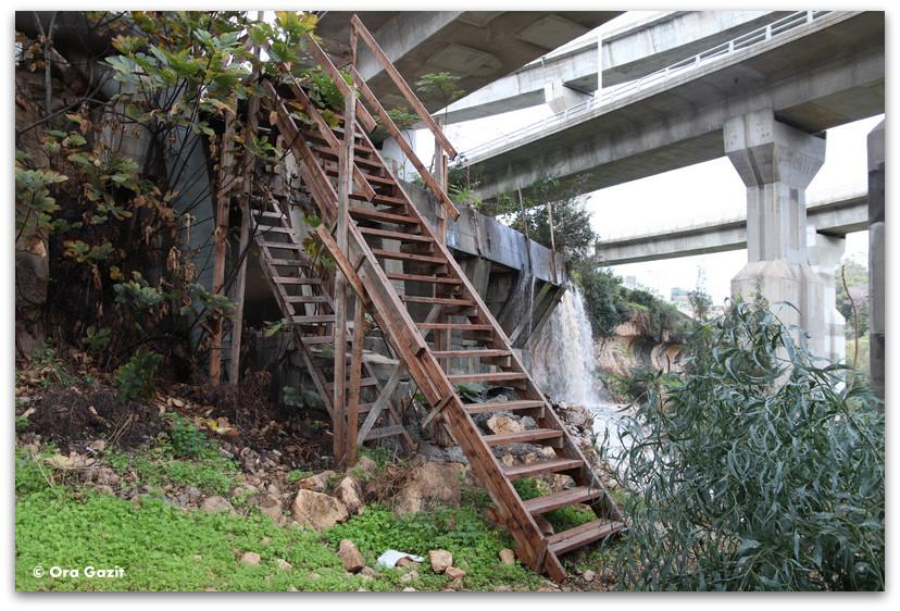 סולם עץ - נחל הגיבורים מסלול - ואדי רושמיה - טיול בחיפה