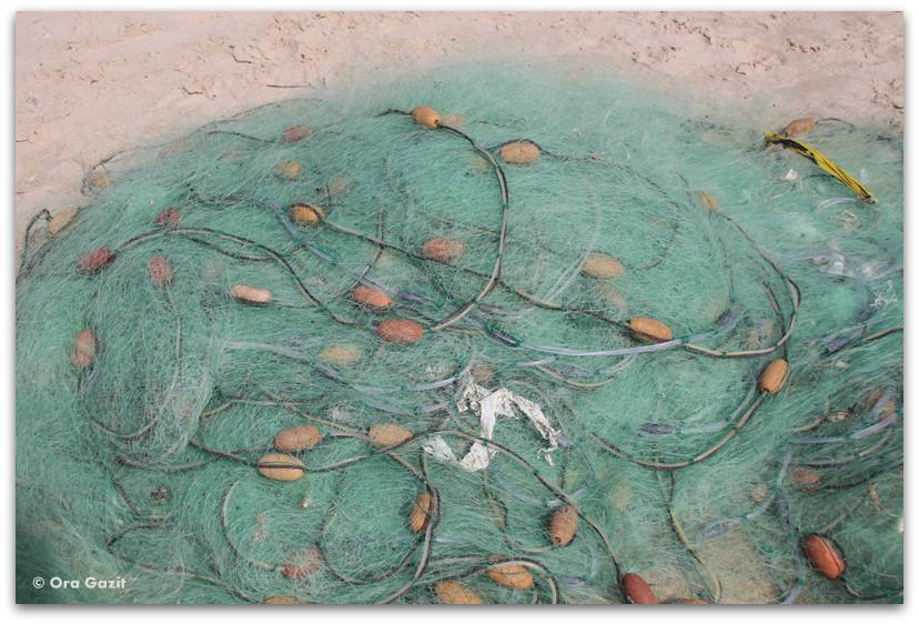 רשת דייגים - ג'סר א זרקא